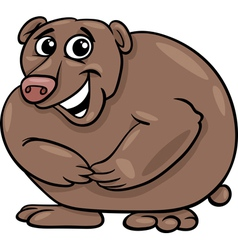 bear animal cartoon vector image