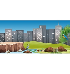 City scene with birds in the park vector image