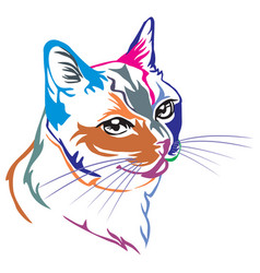 Colorful decorative portrait of thai cat vector