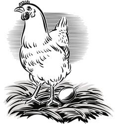 Hen in the nest vector