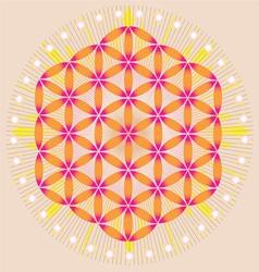 Sacred Geometry flower of life stars vector image vector image