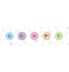 5 honey icons vector