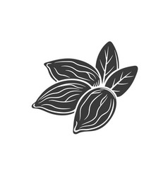 almond nuts glyph icon vector image