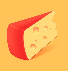 Cheese icon vector
