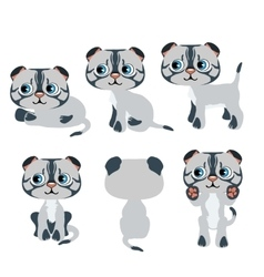 Cute cartoon gray kitten for animation pets vector image