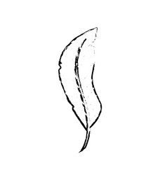 Figure beauty feather style with decoration design vector