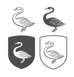 heraldic shields with swan vector image