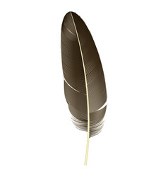 indian feather icon realistic style vector image