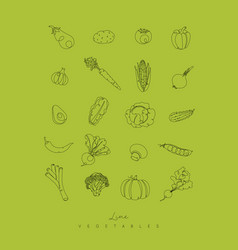 pen line vegetables icons green vector image