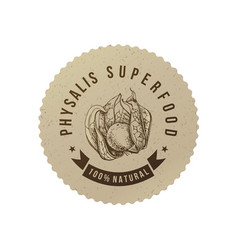 physalis superfood eco label vector image