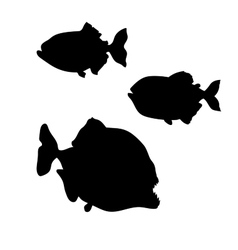 Piranha fish silhouettes vector