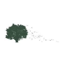 tree with flying leaves vector image