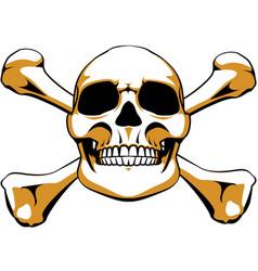 crossbones skull vector image vector image