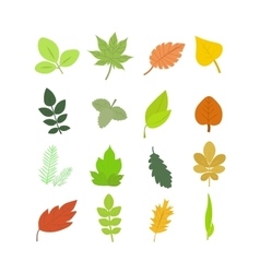 Summer and Autumn Leaves Set vector image vector image