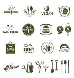 Vegan related vintage badges labels and design vector image