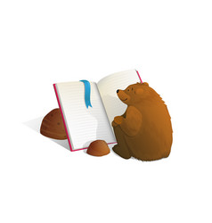 brown bear sitting reading book education cartoon vector image