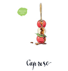Caprese salad on stick traditional italian salad vector