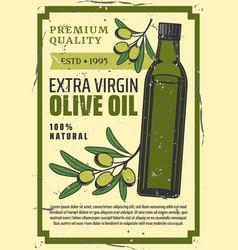 extra virgin olive oil bottle vector image