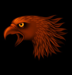 fire eagle head isolated on black background vector image