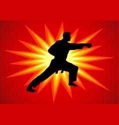 martial artist vector image