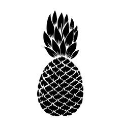 pineapple in engraving style design element vector image