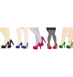 The nice legs of women vector