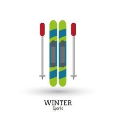 skies winter sport design vector image