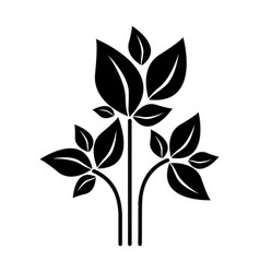 black silhouette plant with branch and leafs vector image
