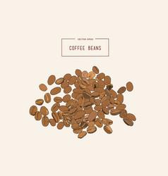 coffee beans hand pencil sketch vector image