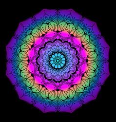 Colourful mandala art vector