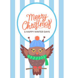 merry christmas owl on branch vector image
