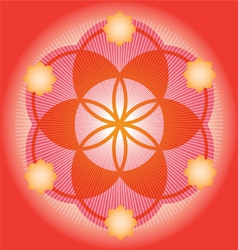 Sacred Geometry red flower vector image