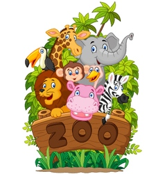 Collection of zoo animals on white background vector