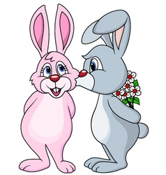 Cute Rabbit couple kissing vector image