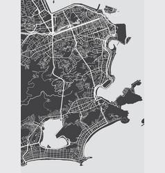 Detailed map rio de janeiro vector