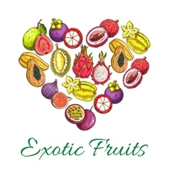 Exotic fresh fruits poster in heart shape vector image