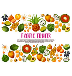 exotic fruits tropical farm agriculture harvest vector image