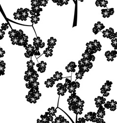 Seamless pattern with black cherry flowers vector
