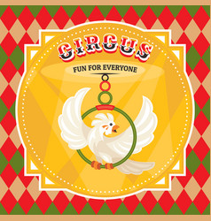 Circus card with a parrot vector