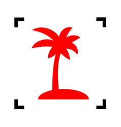 coconut palm tree sign red icon inside vector image
