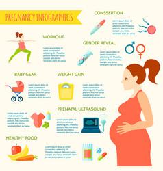 Pregnancy infographic set vector