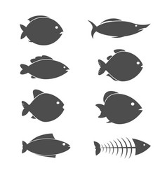 set fish icons vector image