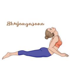 women silhouette cobra yoga pose bhujangasana vector image