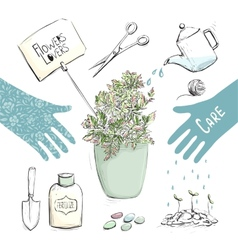 Home Plants or Gardening Tools Collection vector image