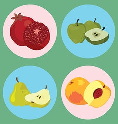 fruits4 vector image vector image