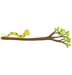 Snake crawling on branch vector
