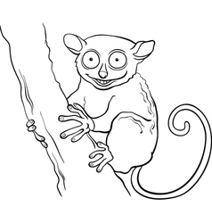 tarsier animal cartoon coloring book vector image