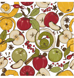 Apples spices and berries vector