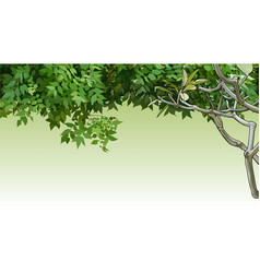 background with painted green leaves and branches vector image