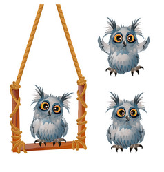 cute fluffy grey owl sits on a swinging perch vector image